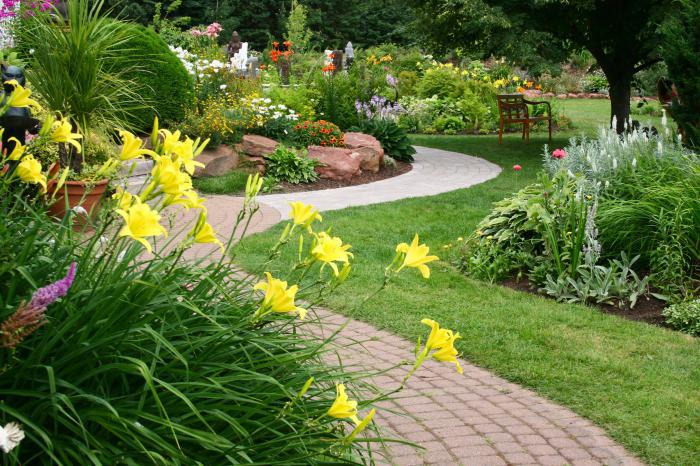 Картинки Про Сад И Огород